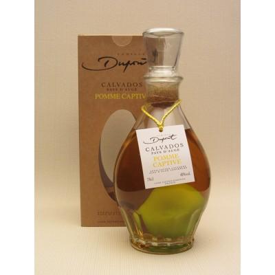 Dupont Pomme Captive Pays d'Auge Calvados
