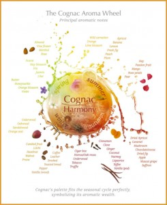 Aroma descriptions